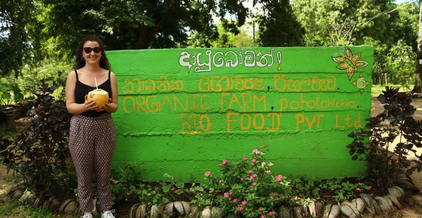 Voyage à travers les jardins d'épices du Sri Lanka