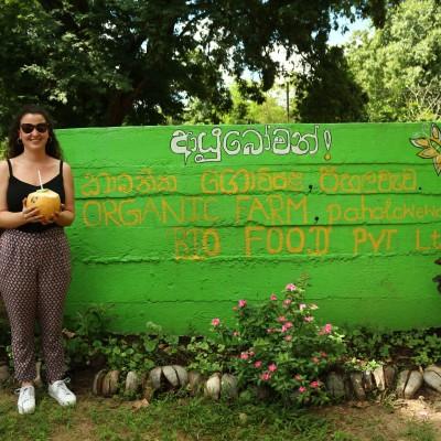 Voyage dans les jardins d'épices du Sri Lanka